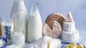 изготовление молочных продуктов
